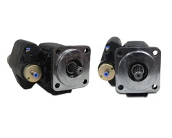 Gear Pumps with integrated valve
